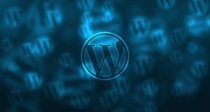 Die wichtigsten WordPress-Plugins
