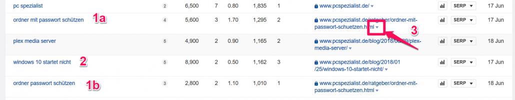 Ranking-Ergebnisse für pcspezialist.de
