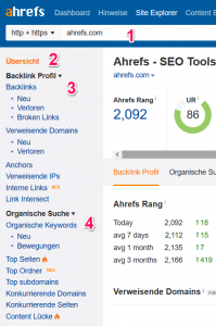 Domain Analyse im Site-Explorer